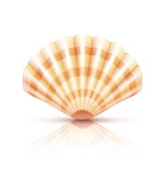Shellfish seashell isolated vector