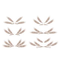 wheat ears design elements set vector image vector image