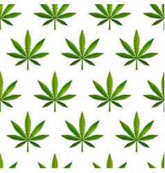 a lot green realistic marijuana leafs medical vector image