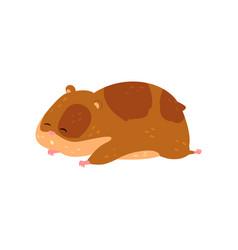 cute cartoon hamster character sleeping funny vector image