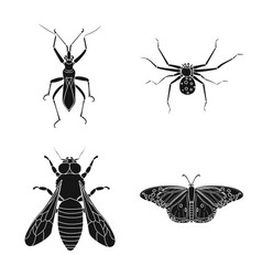 Design of insect and fly icon set of vector