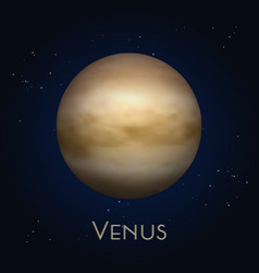 icon isolated venus second solar system planet vector image