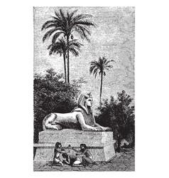 Sphinx ramses ii 19th dynasty vintage vector
