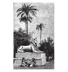 the sphinx of ramses ii 19th dynasty vintage vector image
