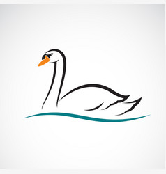 swan on white background wild animals vector image vector image