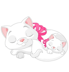 White cats vector