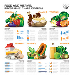 Food And Vitamin Infographic Chart Diagram vector image vector image