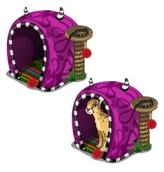 Cat leopard purple sitting in house cage vector