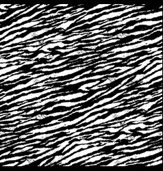 abstract tiger skin wallpaper in black and white vector image