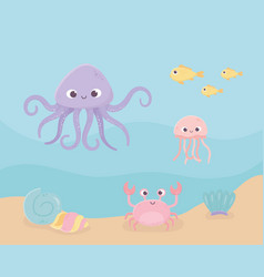 crab snail jellyfish octopus fishes sand life vector image
