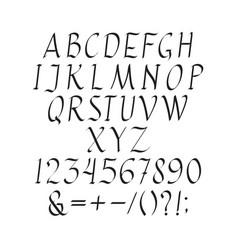 elegant italic font vector image