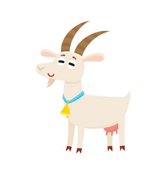 Farm goat with big eyes and horns wearing bell vector