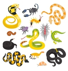 flat snakes collection isolted on shite vector image