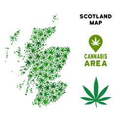 Marijuana mosaic scotland map vector