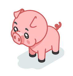 Pig cub isometric 3d cute swine baby animal vector