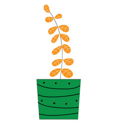 plant with orange leavess inside a green pot on vector image