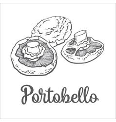 Set of portobello edible mushrooms vector image