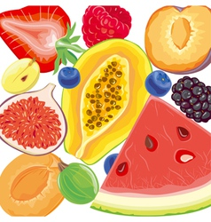 Mix berries and tropical fruits vector image vector image