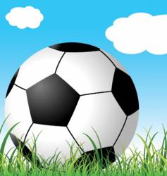 soccer ball on the grass vector image vector image