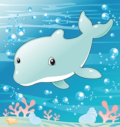 Baby Dolphin vector image vector image