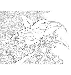 adult coloring bookpage a cute hummingbird vector image