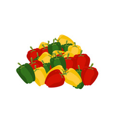 bunch of pepper lot of vegetables big crop vector image