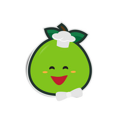 cartoon grapefruit chef with paper shadow vector image