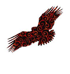 Eagle hawk golden bird spiral pattern color vector
