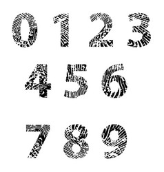 Embossed numbers for education vector