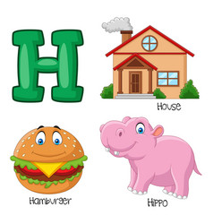h alphabet vector image