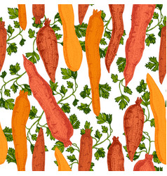 hand drawn beetroot carrot pattern vector image