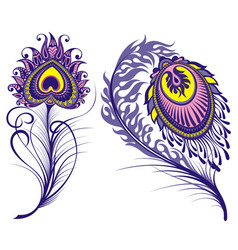isolated peacock feathers for your design vector image