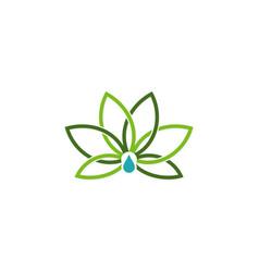 lotus flower logo vector image