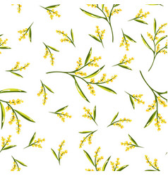 seamless pattern with mimosa flower vector image
