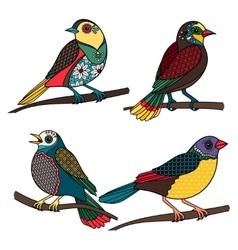 Hand drawn ornamental birds vector image vector image