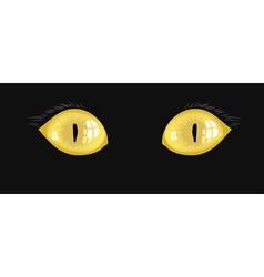 yellow cat eyes vector image