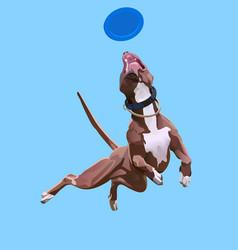Dog-frisbee vector