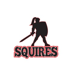 Knight Silhouette Squires Sword Shield Cartoon vector image
