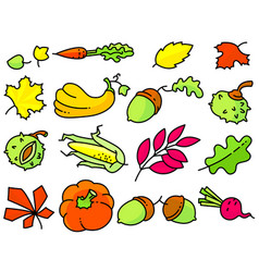 autumn set with bright leaves fall season vector image