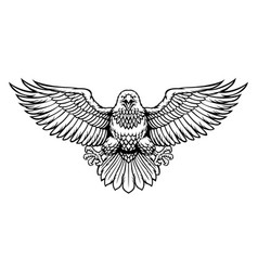 black and white eagle spreading big wings vector image