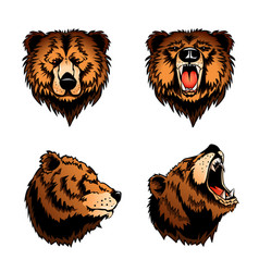 Colored isolated bear heads vector