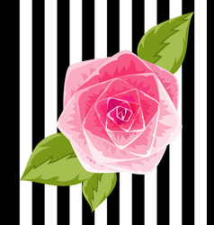 Pink rose bud isolated flower vector