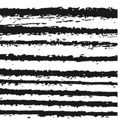 black and white zebra texture background vector image