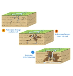 cave formation vector image