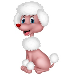 Cute poodle cartoon vector image