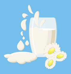 glass of milk with milk splashes and daisies vector image