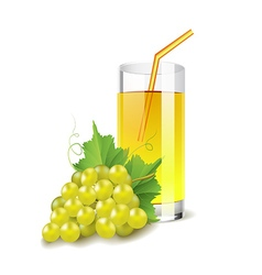 Grapes juice isolated on white vector image
