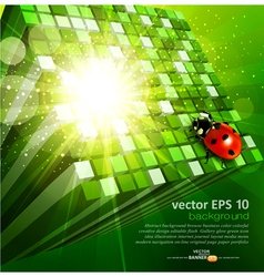 Green cubes and ladybug vector