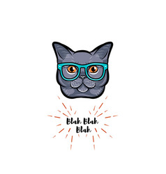 Grey cat in smart glasses vector