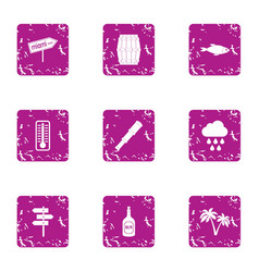 Hot tropical icons set grunge style vector